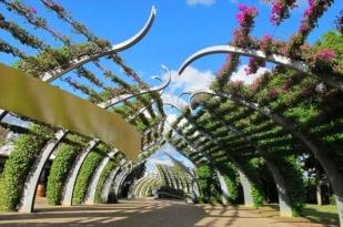 澳大利亚新西兰旅游十二日游-布里斯班,海豚岛,黄金海岸,大堡礁,奥克兰,罗托鲁阿,悉尼