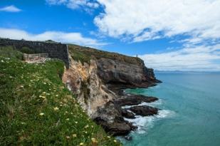 新西兰南岛-奥塔哥半岛 (Otago Peninsula)
