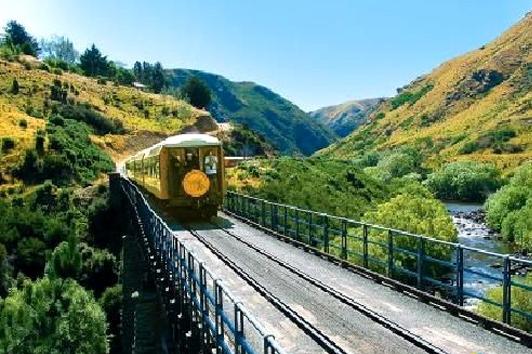 新西兰南岛-泰伊里峡谷观景火车上午但尼丁—普克兰吉往返 (Dunedin Railway)