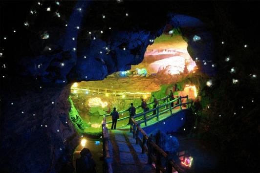 新西兰北岛旅游景点-怀托摩萤火虫洞( Waitmo Glowworm Cave)