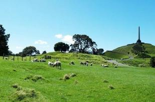 新西兰旅游9日游-奥克兰,皇后街,格雷茅斯,陶波湖,丹尼丁,福斯冰河,奥塔哥大学,蒂卡波湖
