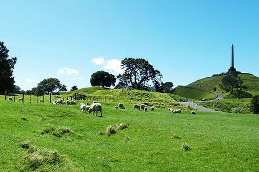 新西兰北岛-伊甸山(Mount Eden)