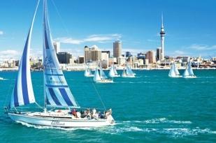 新西兰北岛奥克兰1日包车游•海港大桥+游艇俱乐部+奥克兰市立公园+迷神湾+工党纪念碑公园