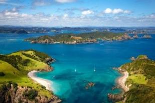 新西兰北岛鸟岛西泉1日跟团游•【黑沙滩Muriwai海滩+观赏塘鹅聚居地+索金酒庄+西泉湖】