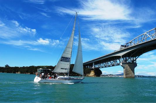 新西兰北岛-奥克兰海滨风帆游