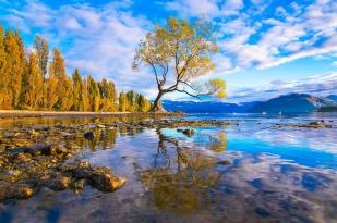 新西兰南岛-瓦纳卡湖(Lake Wanaka)