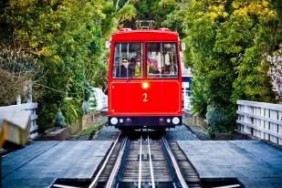 新西兰北岛-惠灵顿红色有轨电车单程(Wellington Cable Car)