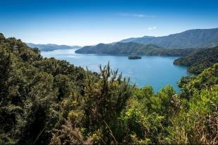 新西兰南岛-皮克顿(Picton)