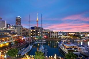 新西兰奥克兰1日包车游•港湾大桥+游艇俱乐部+奥克兰市立公园+帕尼尔区+迷神湾【中文司兼导】